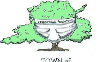 Editorial Cartoon: Tree-Cautions